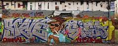 - (txmx 2) Tags: graffiti flora pano hamburg bunker ignorethetagsonwhitetheyarefromastupidflickrrobot
