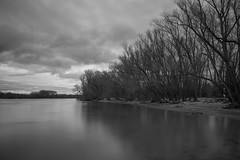 Mombeach - Rhine (ND-filter) (mrichter92) Tags: camera longexposure travel trees sky blackandwhite bw cloud white black tree beautiful lens landscape photography photo interesting aperture nikon exposure flickr pretty mood fotografie image cloudy creative skylight picture sigma scene adventure explore most photograph frame 1750 moment nikkor rhine mainz ndfilter rhinehessen mombeach d5300