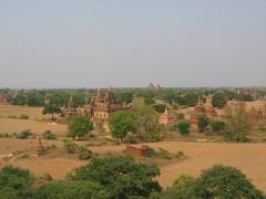 Many Pagodas of Bagan