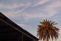 Santa Monica Airport (ichurchwater) Tags: venice sunset plane losangeles airport santamonica palmtree tamron f28 d610 2470