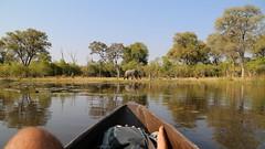 On The Water II (www.mattprior.co.uk) Tags: adventure adventurer journey explore experience expedition safari africa southafrica botswana zimbabwe zambia overland nature animals lion crocodile zebra buffalo camp sleep elephant giraffe leopard sunrise sunset