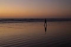 sunset walk (wisnesky1) Tags: ocean sunset sea sky water landscape coast seaside sand outdoor shore nz