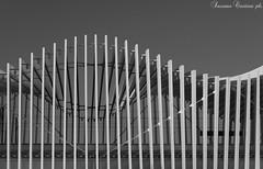 Welle (LaKry*) Tags: biancoenero blackandwhite schwarzundweiss stazione bahnhof station onda wave welle linee lines linie grey grigio grau ombre shadows schatten