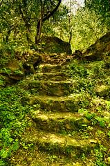 #Nature (george kain) Tags:      moldova