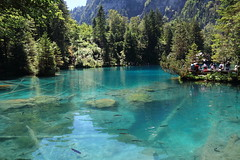 Crystal Clear Blue Water! (kekaneshrikant) Tags: crystal clear water blue blausee transparent 2016 canon 1585 july summer hot sunny