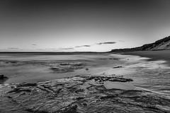 M1150829-Edit.jpg (meerecinaus) Tags: longreef beach collaroy newsouthwales australia au