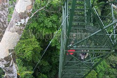 60071596 (wolfgangkaehler) Tags: 2016 southamerica southamerican ecuador ecuadorian latinamerica latinamerican rionapo rionapoecuador rionaporiver rainforest coca cocaecuador laselvalodge observationtower tower people person tourism tourist