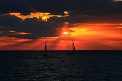 Sailing at sunset - Tel-Aviv beach (Lior. L) Tags: sailingatsunsettelavivbeach sailing sunset telaviv beach sailboats clouds nature travel israel sky sea