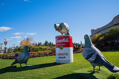who brought the can opener? (ams photos) Tags: soup campbells pigeon statue humerous