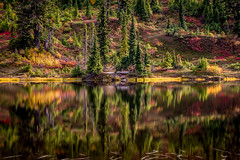 Fall color reflections (Tim Shields BC) Tags: yellow red reflection mountain trees lake water fall colors tim shields photography explore explored travelwashington washington baker picturelake