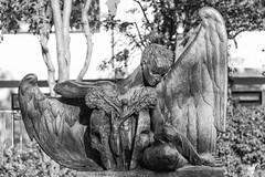 Spring (michael_hamburg69) Tags: reykjavk iceland island reykjavkurborg hfuborgarsvi skulpturengarten sculpture skulptur sculptor bildhauer einarjnsson museum listasafneinarsjnssonar sculpturegarden engel ange angel spring female