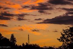 夕暮れ時  (Yorkey&Rin) Tags: 10月 2016 autumn em5 evening eveningglow irontower japan kanagawa kawasaki neighborhood october olympus olympusm75300mmf4867ii rin silhouette sunset ta062275 秋 鉄塔 夕焼け 夕日 夕暮れ時