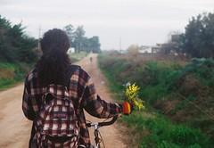 (Hijo de la Tierra.) Tags: 35mm analog analogue grain vintage longhair old giuy bike trip winter uruguay canelones progreso nature