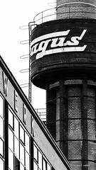 Fagus (mimo b. rokket) Tags: geometrie geometry bauhaus niedersachsen architektur architecture linien lines bw blackandwhite schwarzweis sw monochrom monochrome deutschland germany faguswerk alfeldanderleine unescowelterbe unescoworldheritage waltergropius diagonale