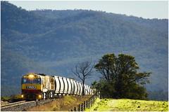 Trains In Tasmania - Coal Train Near Avoca (Trains In Tasmania) Tags: australia tasmania tasrail diesellocomotive trclass tr caterpillar avoca fingalline telephoto coaltrain