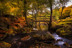 Postcard (unciepaul) Tags: padley gorge peak district monday morning all own autumn beautiful colours landscape water trees bridge october leaves tripod hadtogobacktogetmywellies lightroomhdr longexposure nikond800 nd filter