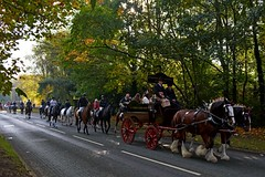 the parade going along Riverside Drive (napoleon666uk) Tags: liverpool international horse festival liverpoolinternationalhorsefestival horseshow echoarena animal parade