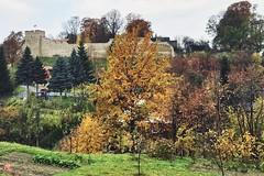 Mury / Walls (Rrrodrigo) Tags: poland autumn stone medieval walls town dobczyce