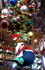 Christmas Time in Texas (EleanorGiul ~ http://thevelvetrocket.com/) Tags: christmas usa texas unitedstatesofamerica roadtrip eua northamerica christmastime eeuu  usaroadtrip  thesouthwest statiunitidamerica  justinames traveltousa hoak visitusa  httpthevelvetrocketcom eleonoragiuliani eleonoraames
