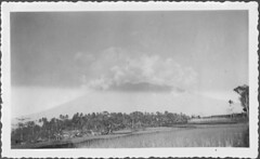's Lands Plantentuin in Buitenzorg in the Dutch East Indies in the thirties (Karin Riper († 24 April 2015)) Tags: old nature vintage indonesia landscape thirties asia landscaping indie oud indonesie oude plantentuin dutcheastindies nederlandschindie buitenzorg slandsplantentuin karinriper