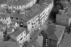 Siena dall'alto (marcosmallred) Tags: italien italy italia tuscany siena toscana italie