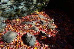 Rocks & Leaves on Doyles River Falls Trail (DTB_5285) (masinka) Tags: park autumn light shadow fall nature colors leaves outdoors virginia nationalpark rocks unitedstates sunny hike foliage trail shenandoah crozet