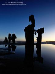 Posts on Blue (ScudMonkey) Tags: wood blue abstract reflection beach water silhouette sunrise canon landscape dawn coast early posts groyne 6d sandsend ef1740mmf4l c2014paulbradley postsonblue