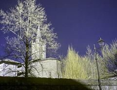 Chieri2015_IR_2220537 copia (stegdino) Tags: tree lamp ir worship steeple chiesa campanile lampost infrared albero lampione chieri chirch