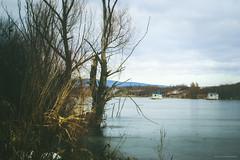 (Katarina Drezga) Tags: lake ice nature landscape frozen woods serbia ruma vojvodina srbija srem borkovac borkovaclake nikond3100 nikkor55300mm4556gvr borkovackojezero