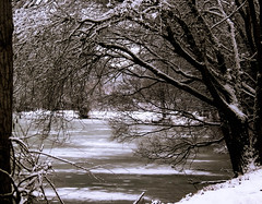 Frozen In Winter (mahar15) Tags: park trees winter snow cold ice nature minnesota landscape frozen midwest scenery freeze winona snowcovered