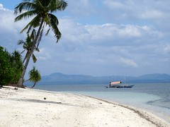 Notre plage à Pamilacan Island