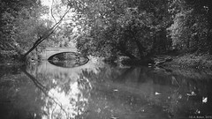 """Spy Run Creek"" (D A Baker) Tags: ft fort fortwayne ind indiana spy run creek spyruncreek bridge old reflection reflections landscape allen county allencounty lawton park landscapes daniel baker da"
