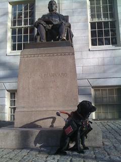 Proud Harvard Student