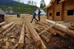 Ácsok - Carpenters (kgyd) Tags: ukraine carpenters ukrajna kárpátalja ács felsőszinevér
