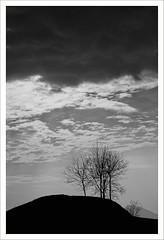 Senza titolo 68 (Outlaw Pete 65) Tags: trees sky blackandwhite white black alberi clouds landscapes italia nuvole hill cielo paesaggi bianco lombardia nero biancoenero collina maspiano revuenon55mm fujixe2