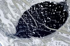 150207_Egerer_Stausee_Eisblatt (Luftknipser) Tags: winter by germany bayern deutschland bavaria see blatt eis deu oberpfalz luftbild luftaufnahme vonoben gefroren airpicture musterung