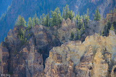YellowStone-9680.jpg (ngkaiwa) Tags: yellowstone yellowstonepark