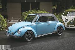 VolkFest Cruise 2016 (Sage Goulet (SAGO PHOTO)) Tags: cruise vw bug beetle a4 audi acura nsx porsche911 germans audis4 911turbo 2016 audia4 vwvan gruppem acuransx volkfest rs5 porschespeedster vwbettle audirs5 progressiveautomotive sagegoulet a4wagon sagophoto volkfestcruise2016 victoriavw volkfestcruise victoriavwclub victoriaaudiclub vancouveraudiclubislandgroup