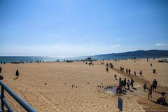 @IMG_4380 (bruce hull) Tags: sanfrancisco california aquarium coast highway chinatown pacific wharf whales coit emabacadero
