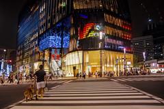 TOKYO SUMMER (ajpscs) Tags: nightphotography lines japan night japanese lights tokyo ginza nikon nightshot mosaic pedestrian citylights d750  nippon  intersection nightview crosswalk afterdark treet pedestriancrossing signallight urbannight  tokyonight tokyosummer scramblecrossing   ajpscs sukuranburuksaten tokyoinsomnia tokyoyakei dayfadesandnightcomesalive