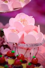 HELENA 1 ANO SITE-34 (agencia2erres) Tags: 1 ano helena aniversrio aniversario party first bday birthday one bebe menina jardim piquenique garden flores flor flower flowers