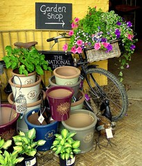 The Garden Shop at Wimpole (Jayembee69) Tags: wimpole wimpolehall cambs cambridgeshire england shop pot plant nationaltrust nt bike bicycle gardenshop