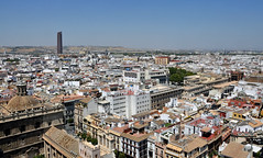 'Sore Thumb' (EZTD) Tags: eztd eztdphotography eztdphotos photos fotos nikond90 sevilla seville sevilha spain espana espagne spana torrepellisevilla sevilletower torresevilla torre giralda skyscraper cesarpelli skyline