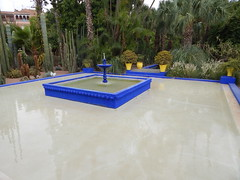 DSCN2636 (dbohaty) Tags: jardin majorelle morocco almaghrib