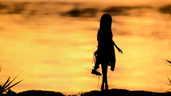 silhouette (のの♪) Tags: dd dollfiedream 夕景 sunset silhouette