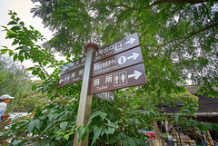 (EricGsk) Tags: voigtlander superwideheliar 15mm f45 iii emount fullframe sony a7ii sonya7ii structure scenery shanghai zhujiajiao