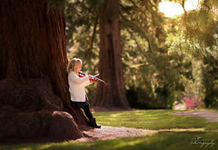 ... Where words fail, music speaks ... (Margarita K...) Tags: southwales south wales beautifulwales belle vue park tree child childhood fairytales portrait violin ngc nikon d5200 mkphotography margaritakphotography
