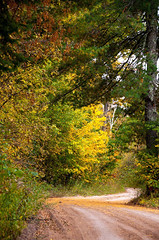 fall path (aileensandwick) Tags: path fall colors