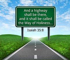 Isaiah 35:8 (joshtinpowers) Tags: isaiah bible scripture