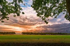 Clouds Burning In A Frame (Alfred Grupstra Photography (bussy until 30 octobe) Tags: sky clouds landscape meadow sun sundown trees oostwoud noordholland nederland nl